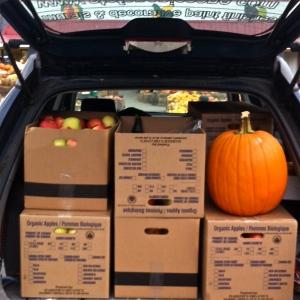 Traveling pumpkin
